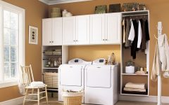 Small Laundry Minimalist Design