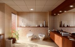 Stylish Bathroom and Toilet Interior 2014