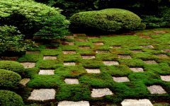 Unique Garden Path Design Ideas