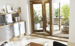 Wood Frame and Glass Door