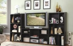Bookshelf TV Stands Combo