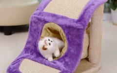 10 Best Cat Tunnel Ideas, Perfect Gifts for Cat Lovers