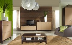 Contemporary Living Room Bookcases and Cabinet Furniture