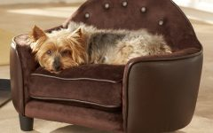 Sofas for Dogs