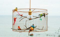 Birdcage Pendant Lights