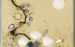 Wall Art With Seashells
