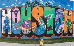 Houston Wall Art
