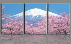 Japanese Canvas Wall Art