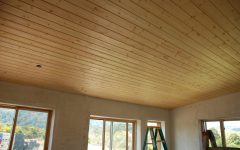 Simple Wood Finished Ceiling Interior