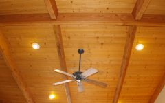 Wooden Ceiling Panel With Ceiling Fan and Lighting